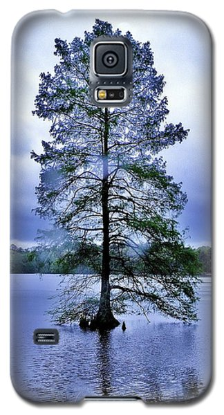 The Healing Tree - Trap Pond State Park Delaware Galaxy S5 Case