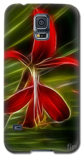 Tropical Abstract Galaxy S5 Case