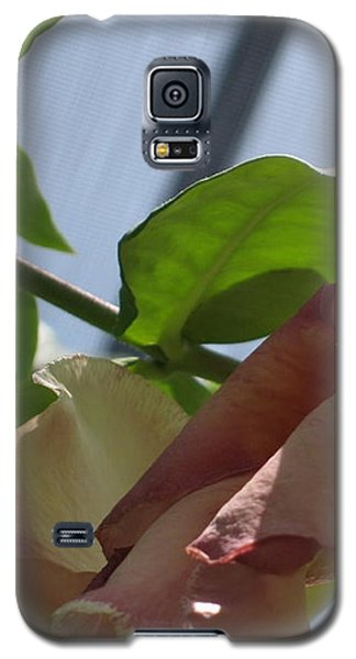 Tropical Beauty Galaxy S5 Case