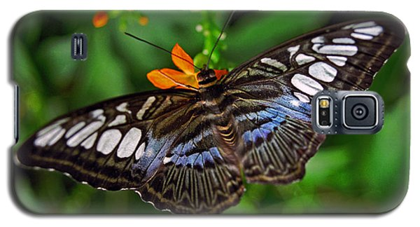 Galaxy S5 Case featuring the photograph Tropical Butterfly by Marie Hicks