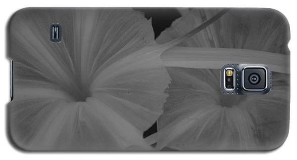 Galaxy S5 Case featuring the photograph Tropical Garden by Miguel Winterpacht