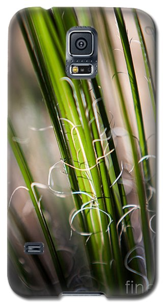 Galaxy S5 Case featuring the photograph Tropical Grass by John Wadleigh