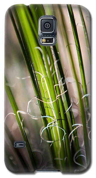 Tropical Grass Galaxy S5 Case