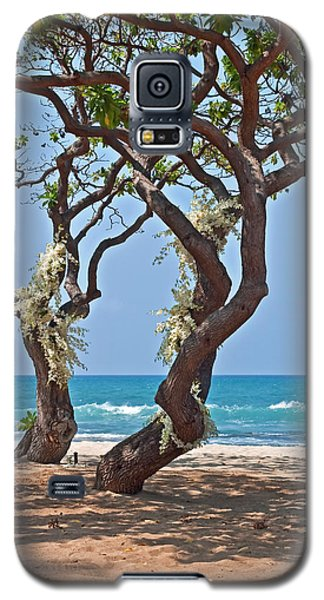 Tropical Heliotrope Trees With White Orchids On Beach Galaxy S5 Case