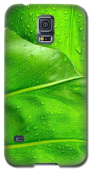 Tropical Leaves Galaxy S5 Case