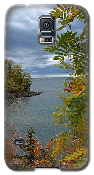 Tropical Mountain Ash Galaxy S5 Case by James Peterson