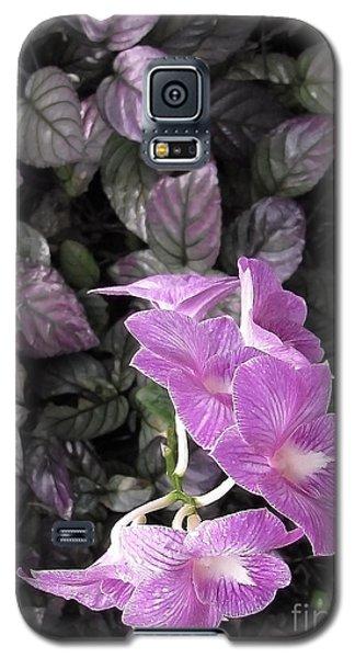 Tropical Orchids Galaxy S5 Case by Ellen Cotton