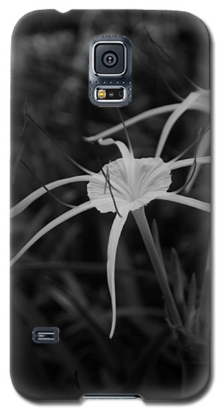 Galaxy S5 Case featuring the photograph Tropical Paradise by Miguel Winterpacht