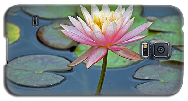 Tropical Pink Lily Galaxy S5 Case