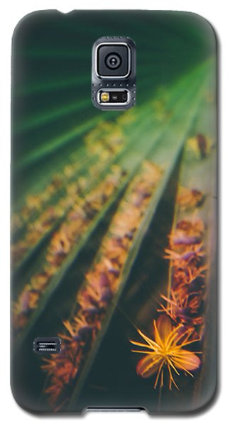 Tropical Ray  Galaxy S5 Case