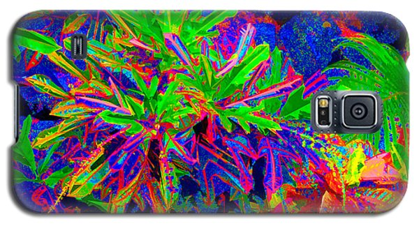 Galaxy S5 Case featuring the photograph Tropicals Gone Wild by David Lawson