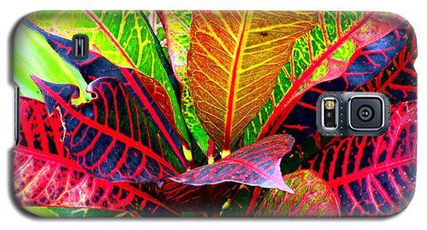 Tropicals Gone Wild Naturally Galaxy S5 Case