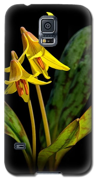 Trout Lilies Galaxy S5 Case