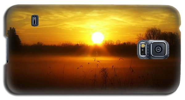 true Beauty in Light II Galaxy S5 Case