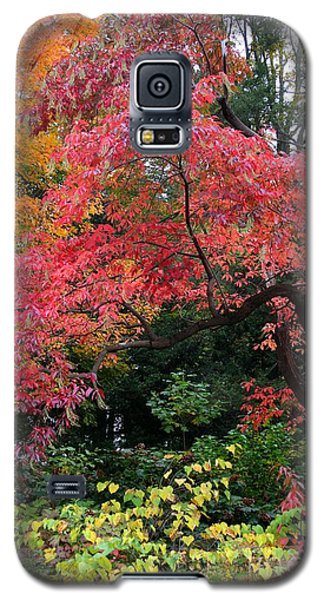 True Colors Galaxy S5 Case by Geri Glavis