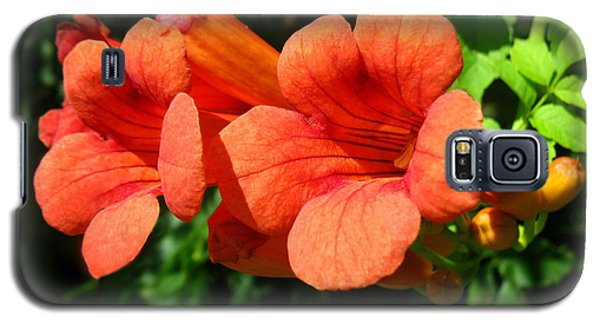 Galaxy S5 Case featuring the photograph Wild Trumpet Vine by William Tanneberger