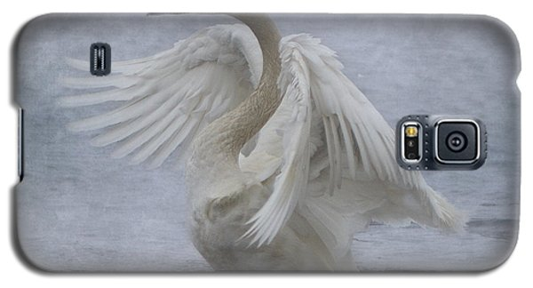 Trumpeter Swan - Misty Display Galaxy S5 Case by Patti Deters