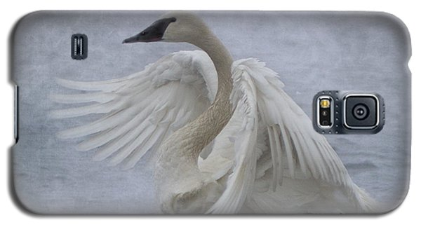 Trumpeter Swan - Misty Display Galaxy S5 Case