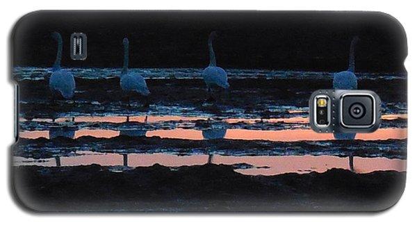 Trumpeter Swans In Pink Galaxy S5 Case by Karen Molenaar Terrell
