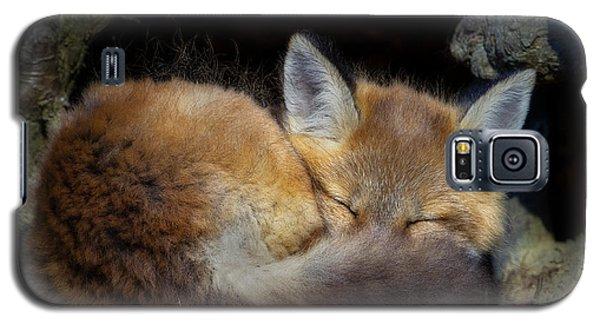 Fox Kit - Trust Galaxy S5 Case