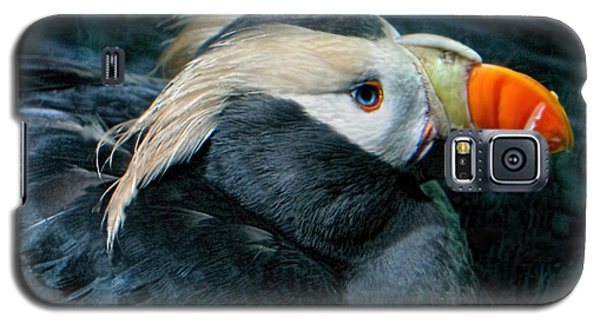 Tufted Puffin Profile Galaxy S5 Case by Jennie Breeze