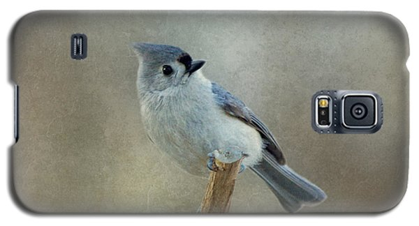 Tufted Titmouse Watching Galaxy S5 Case
