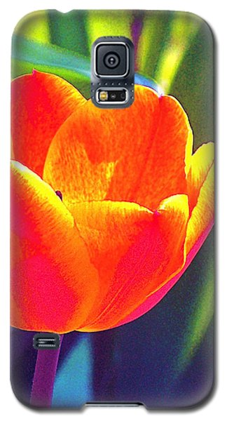 Galaxy S5 Case featuring the photograph Tulip 2 by Pamela Cooper