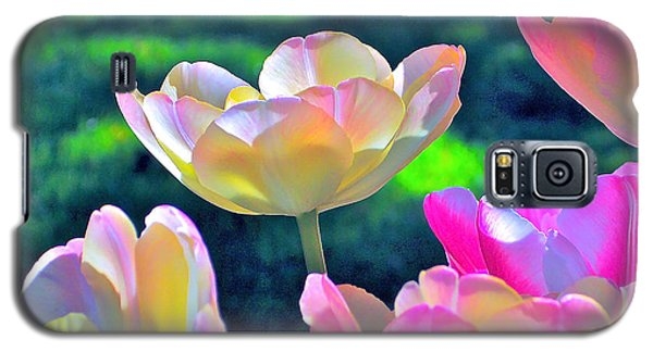 Tulip 21 Galaxy S5 Case by Pamela Cooper