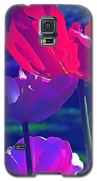 Galaxy S5 Case featuring the photograph Tulip 3 by Pamela Cooper