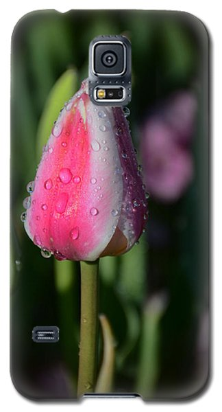 Tulip Bud With Water Galaxy S5 Case
