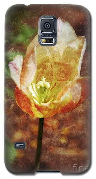 Galaxy S5 Case featuring the photograph Tulip by Darla Wood