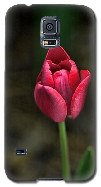 Tulip Galaxy S5 Case