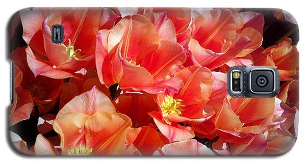 Tulip Festival - 39 Galaxy S5 Case by Hanza Turgul