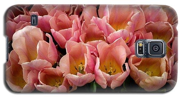 Tulip Festival - 5 Galaxy S5 Case by Hanza Turgul