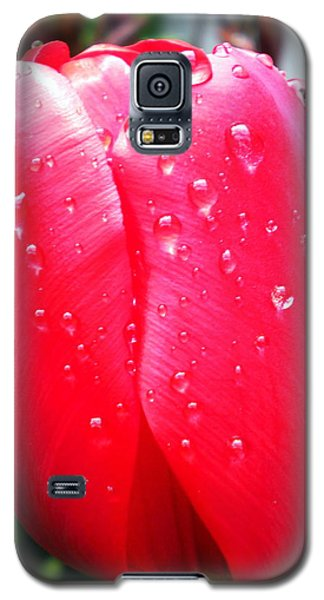 Galaxy S5 Case featuring the photograph Tulip Flower Rain Drops by Colette V Hera  Guggenheim