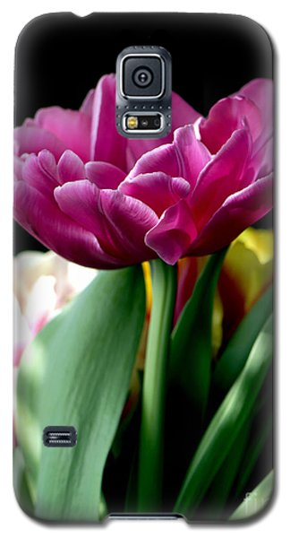 Tulip For Easter Galaxy S5 Case