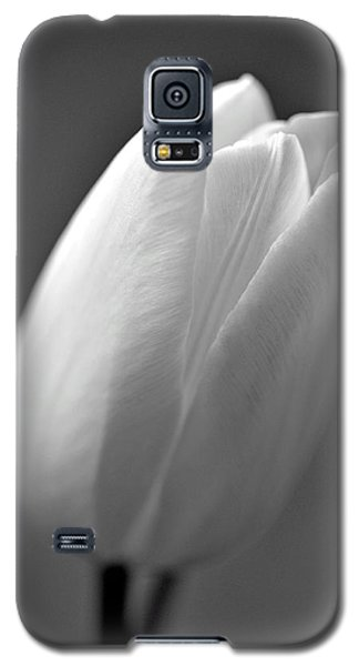 Tulip In Black And White Galaxy S5 Case