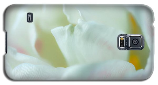 Galaxy S5 Case featuring the photograph Tulip by Jonathan Nguyen