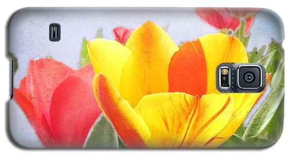 Tulip Joy Galaxy S5 Case by Deborah Smith