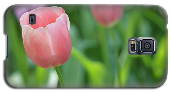 Galaxy S5 Case featuring the photograph Tulip by Kathy Churchman