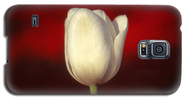Galaxy S5 Case featuring the photograph Tulip by Marion Johnson