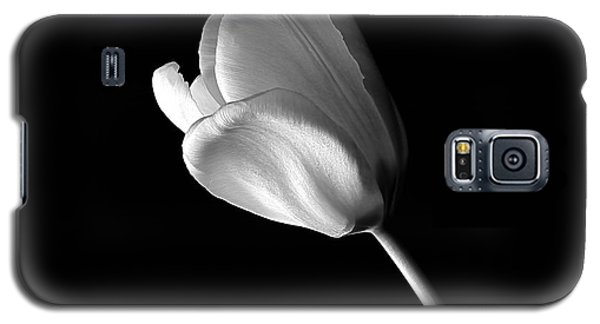 Galaxy S5 Case featuring the photograph Tulip by Marwan Khoury
