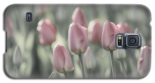 Tulip Patch Galaxy S5 Case