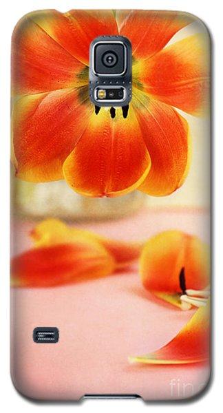 Tulip Petals Galaxy S5 Case by Stephanie Frey