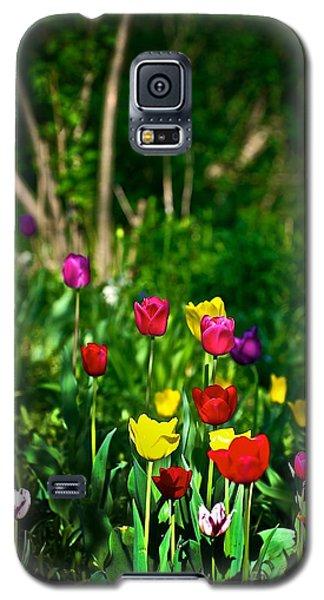 Tulip Rainbow Galaxy S5 Case