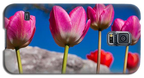 Tulip Galaxy S5 Case - Tulip Revival by Chad Dutson