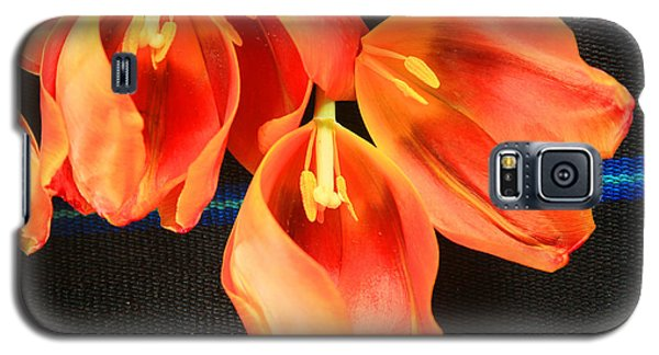Tulip Study Galaxy S5 Case by Jeanette French
