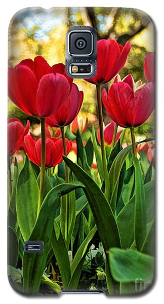 Tulip Time Galaxy S5 Case by Peggy Hughes