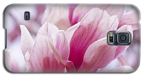 Tulip Tree Blooms Galaxy S5 Case