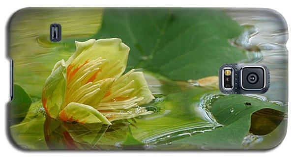 Tulip Tree Flower Galaxy S5 Case by Jane Ford